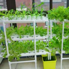 Гідропонна установка на 108 рослин