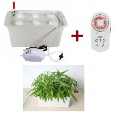 Домашня гідропонна система на 6 рослин з таймером